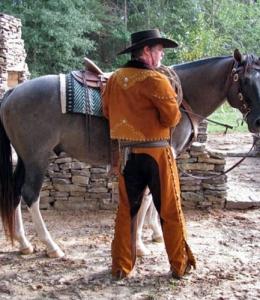 v_main_horse