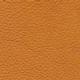 leatherdusk
